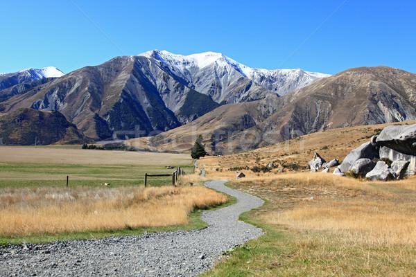кривая путь горные замок холме Новая Зеландия Сток-фото © vichie81
