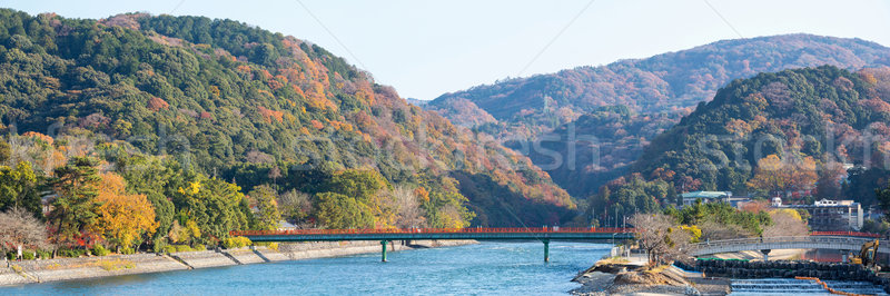 Panorama kyoto Japonya kasaba su Bina Stok fotoğraf © vichie81