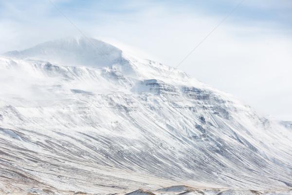 IJsland winter landschap sneeuw berg boom Stockfoto © vichie81
