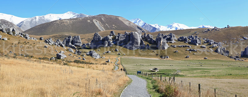 curve pathway at Castle Hill alps mountain range New Zealand Stock photo © vichie81