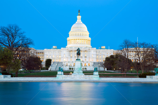 US Capitol Building Stock photo © vichie81