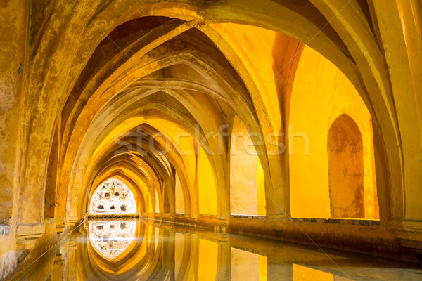 Alcazar of Sevilla Stock photo © vichie81