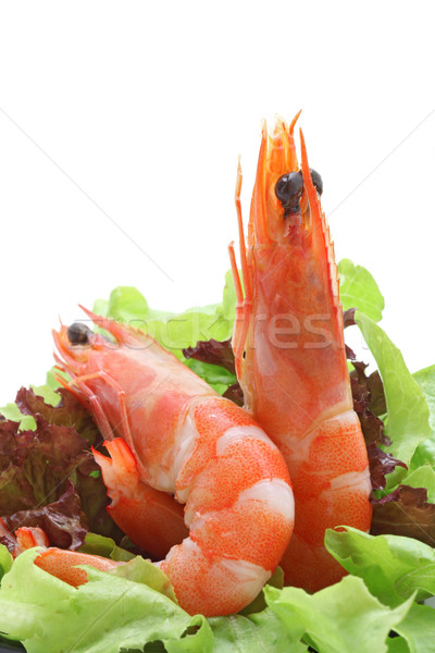 Shrimp salad cocktail Stock photo © vichie81