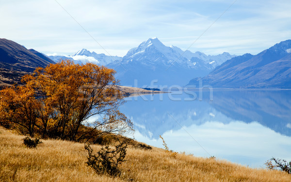 Landscape of mountain Cook Range Stock photo © vichie81