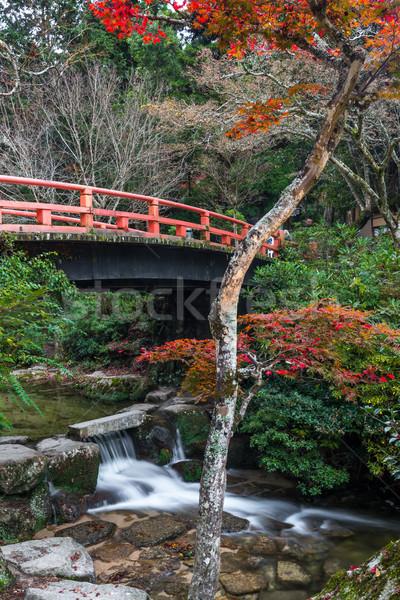 Miyajima, Hiroshima, Momijidani Park Stock photo © vichie81