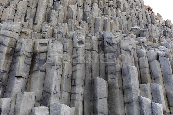 Reynisfjara VIK Iceland Stock photo © vichie81
