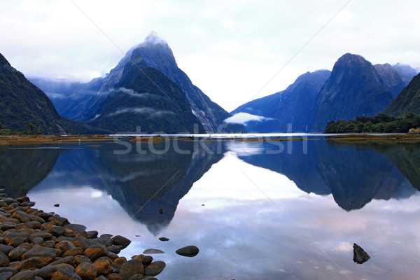 reflection of high mountain glacier at milford sound, New Zealan Stock photo © vichie81