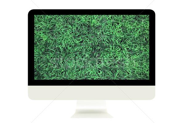 Groen gras scherm geïsoleerd witte sport Stockfoto © vichie81