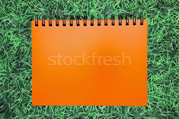 blank orange ring binding on green grass Stock photo © vichie81