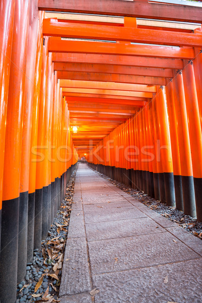 torii gates at Fushimi Inari Kyoto Stock photo © vichie81
