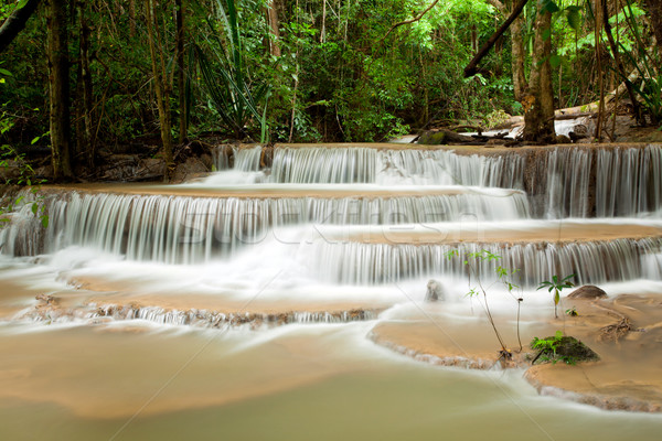 Tropical Climate Waterfall Stock photo © vichie81