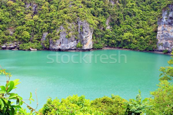 Zümrüt ada güney Tayland ağaç Stok fotoğraf © vichie81