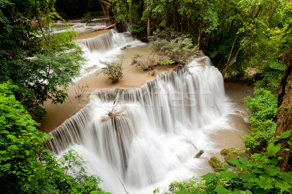 Tropical Rain forest waterfall Stock photo © vichie81