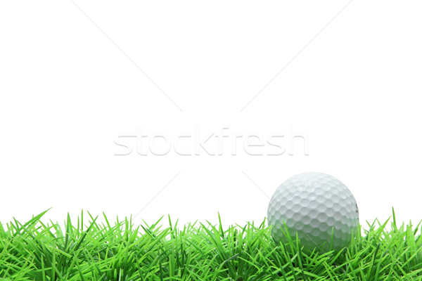 Izolált golflabda zöld fű fehér égbolt textúra Stock fotó © vichie81