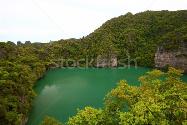 Smeraldo isola meridionale Thailandia albero foresta Foto d'archivio © vichie81