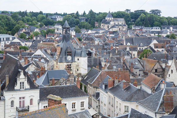 Amboise Cityscape France Stock photo © vichie81