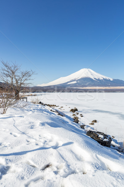 Górskich fuji zimą Mount Fuji jezioro Zdjęcia stock © vichie81
