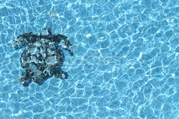 pool water texture Stock photo © vichie81