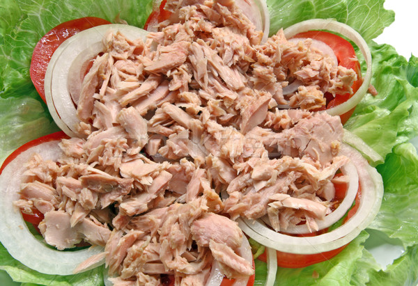 Tonhal saláta előkészítés thai fűszeres tonhal zöld Stock fotó © vichie81
