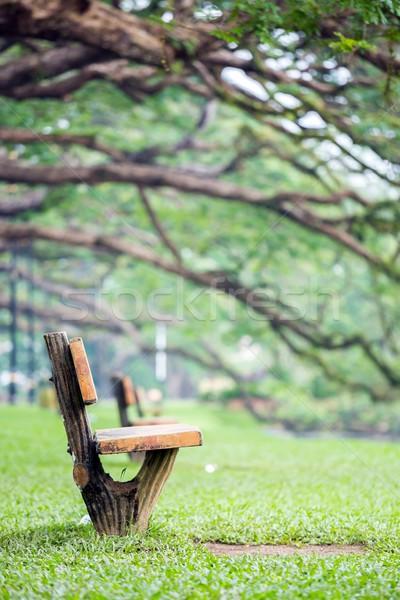 lake garden at taiping malaysia Stock photo © vichie81