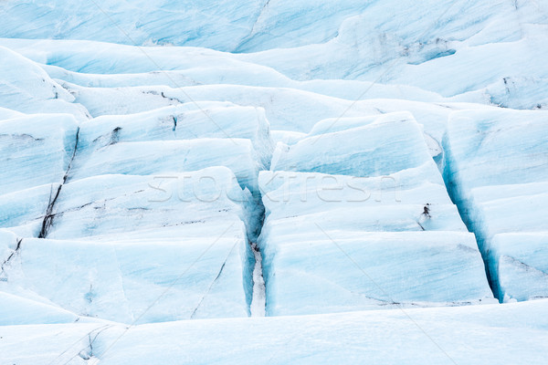 氷河 アイスランド 雪 氷 冬 青 ストックフォト © vichie81
