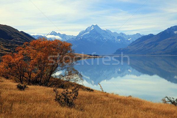 landscape of mountain Cook with its reflection from Lake Pukaki Stock photo © vichie81
