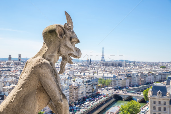 Gargoyle at Notre Dame Paris Stock photo © vichie81