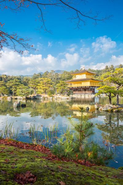 Or kyoto Japon temple arbre jardin Photo stock © vichie81