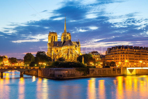 Notre Dame Cathedral Paris Stock photo © vichie81