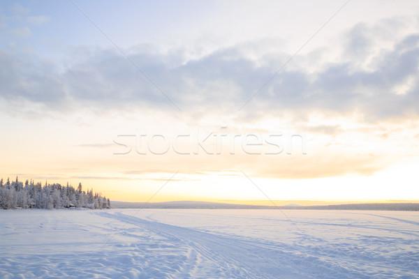 Sunrise hiver paysage Suède ciel arbre Photo stock © vichie81