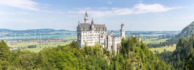Neuschwanstein castle Stock photo © vichie81