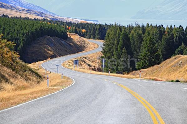 Strada fuori lungo autostrada legno Foto d'archivio © vichie81