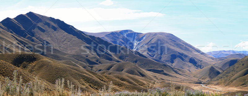 Mountain Landscape Lindis Pass New Zealand Panorama Stock photo © vichie81