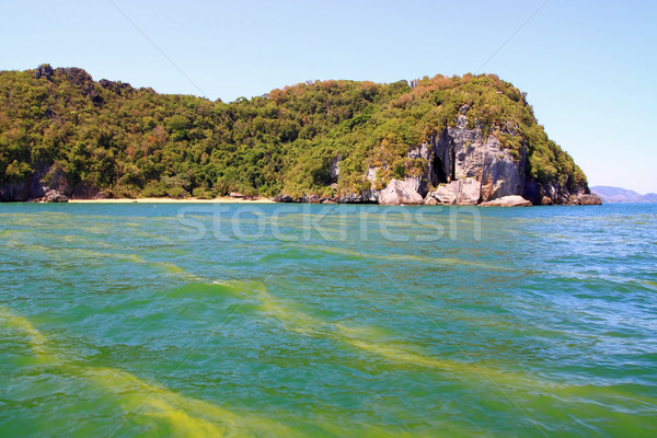 Rouge marée mer pollution occasionner réchauffement climatique Photo stock © vichie81