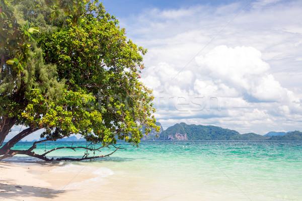 Trópusi fehér homok tengerpart gyönyörű tenger Thaiföld Stock fotó © vichie81