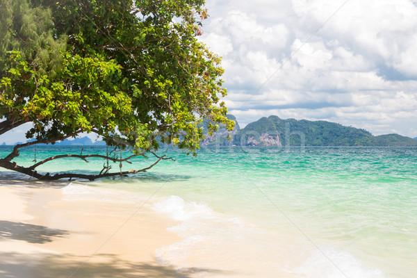 tropical white sand andaman beach Stock photo © vichie81