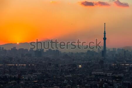 Tokyo gün batımı şehir dağ fuji Stok fotoğraf © vichie81