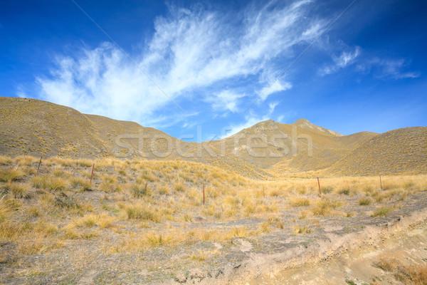 合格 ニュージーランド 風景 山 ストックフォト © vichie81