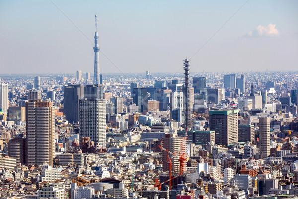 Aerial Tokyo Cityscape Stock photo © vichie81