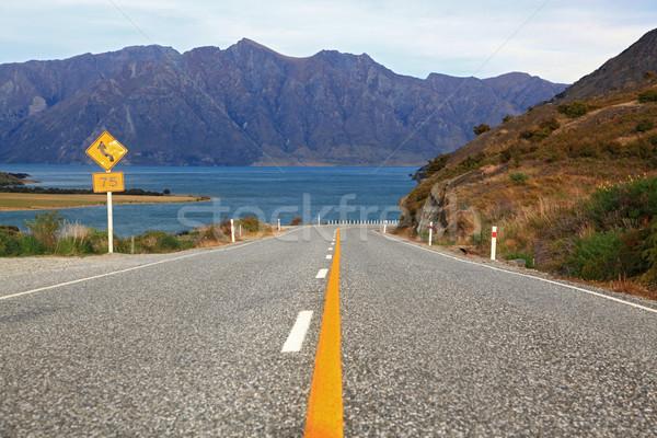 perspective of highway road freeway to lake Hawea in Wanaka New  Stock photo © vichie81