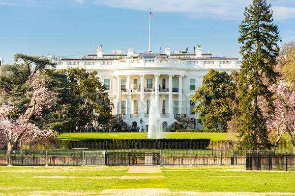 Casa blanca Washington DC Estados Unidos oficina casa blanco Foto stock © vichie81