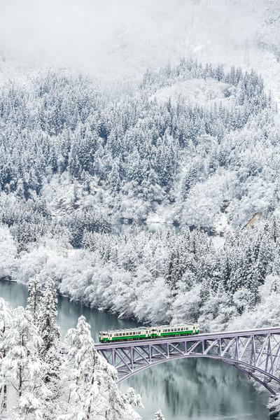Inverno paisagem trem neve coberto árvores Foto stock © vichie81