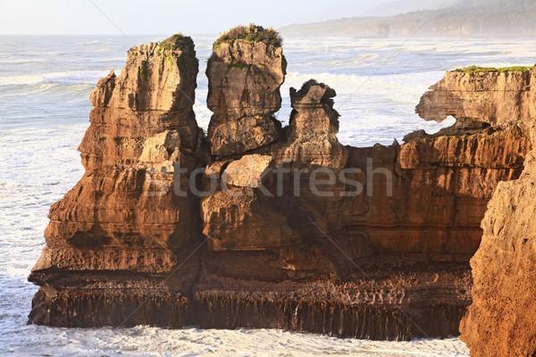 new zealand grand canyon Stock photo © vichie81