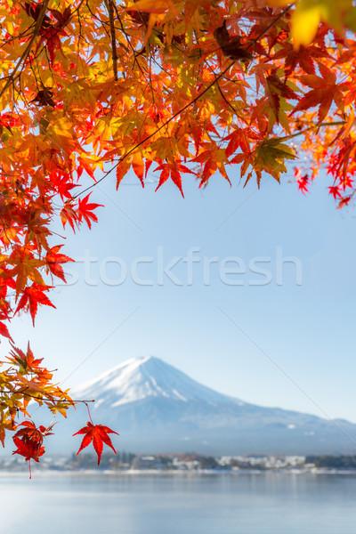 秋 湖 日本 選択フォーカス カエデの葉 ストックフォト © vichie81