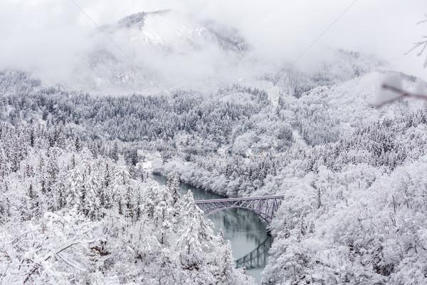 Winter landscape train Stock photo © vichie81