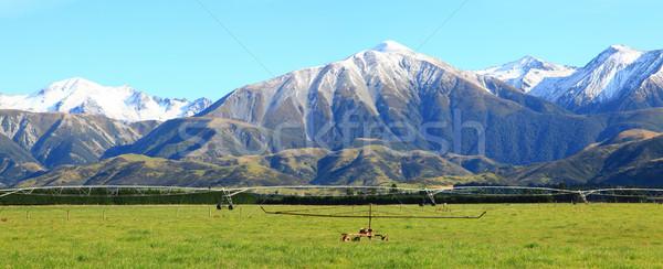 Alpino alpes Nueva Zelandia meridional nubes Foto stock © vichie81