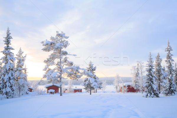 Inverno panorama Svezia casa cielo albero Foto d'archivio © vichie81