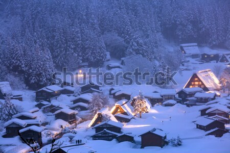 Nevadas Japón edificio luz invierno arquitectura Foto stock © vichie81