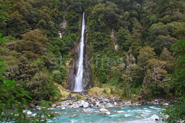 Donder kreek vallen New Zealand tropische bos Stockfoto © vichie81