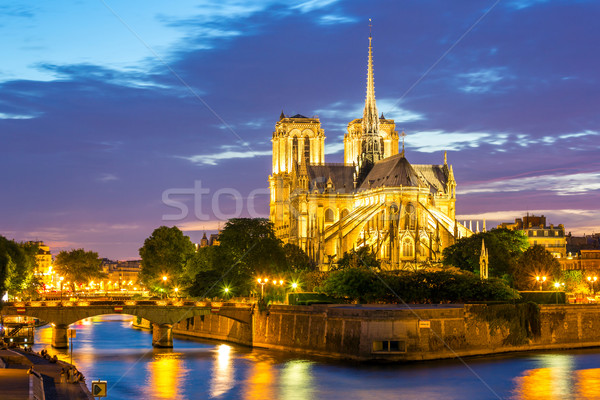 Notre Dame Cathedral Paris Stock photo © vichie81